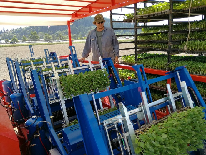 FUTURA AUTOMATED Transplanter