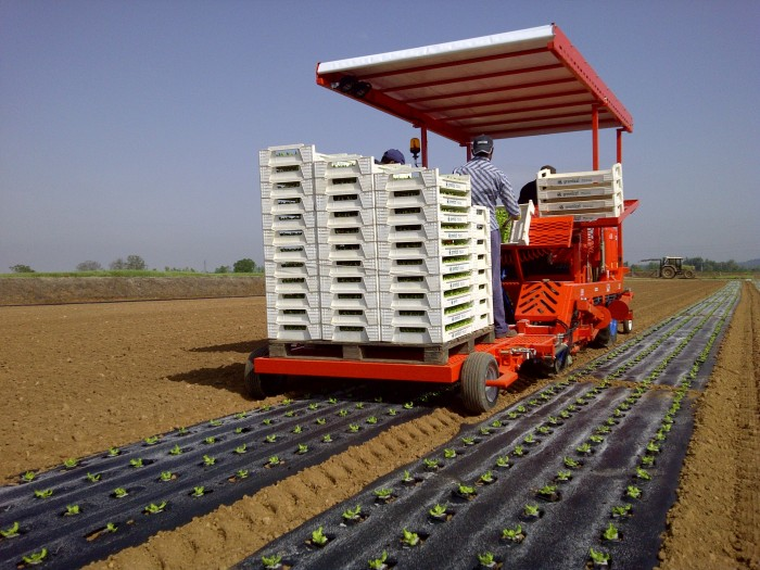 FPC Layer and Transplanter